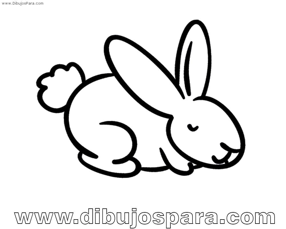 Dibujo de Conejo Facil para Colorear | para Pintar | Dibujos para ...