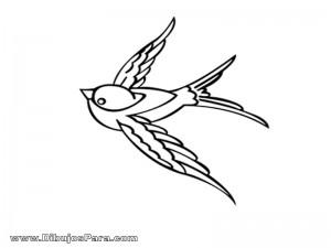 Dibujo de Paloma Blanca