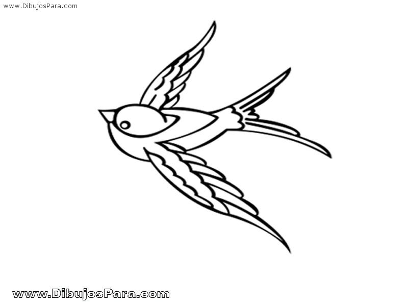 Dibujo de Paloma Blanca  Dibujos de Palomas para Pintar  Dibujos